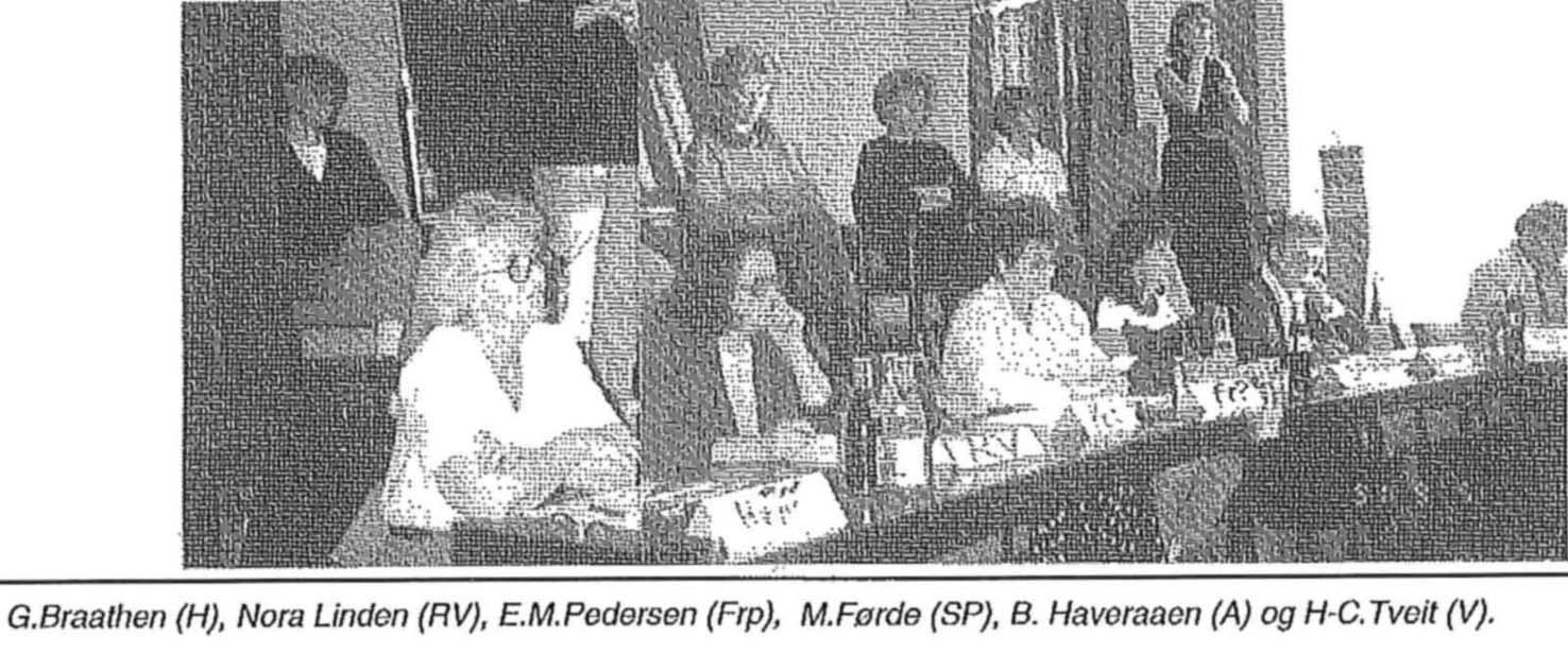 Panelet 1991